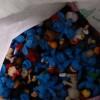 广东塑胶|可信赖的各类塑胶回收东莞哪里有提供