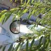 四平防蜂服|辽宁哪里有供应质量好的防蜂服
