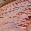 废铜回收价格|天津可靠的废塑料回收