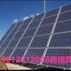 太阳能电池片回收价位|苏州具有口碑的原生多晶回收