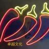 合肥LED霓虹灯-卓越文化专业供应霓虹灯