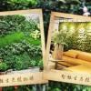 哈尔滨花卉租赁价格-可靠的哈尔滨绿植花卉租赁哪里有