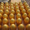 西安庆典用金蛋批发价格|金蛋专业报价