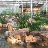 灵璧龟纹石-宿州优良供应商,灵璧龟纹石