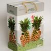 水果手提礼盒订制-华杨包装供应超值的水果礼盒