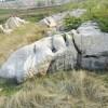 草坪石-山东地区具有口碑的假山工程怎么样