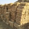 陕西草支垫价格-宁夏哪里有供应品质优良的草支垫