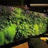 广州有品质的垂直立体绿化生态设计