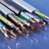宁夏热卖的光纤|固原光纤