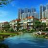 深圳园林绿化养护-大业园林供应放心的园林绿化养护