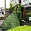 市政园林园艺景观|沈阳杰欣景观绿化工程销量好的市政园林园艺出售