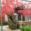 西安仿真榕树-来龙岩景观-买口碑好的西安假树