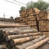 青海木头-怎样才能买到有品质的方木