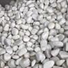 鞍山抛光机制鹅卵石厂家-岫岩新泰好用的抛光机制鹅卵石新品上市