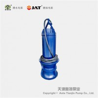 1200QZB潜水轴流泵_检修_安装方式