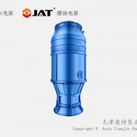 漂流用雨水排污泵_安装特征