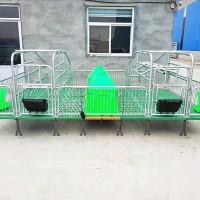 双体母猪产床 连体产仔栏架 厂家直销