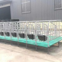 猪用定位栏加厚母猪限位架