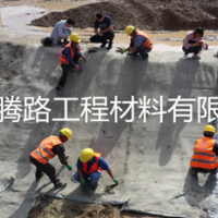 贵州铜仁高速公路排水沟用水泥毯