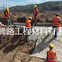 潮州农村水渠改造新方法 腾路浇水速干水泥毯