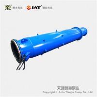 底吸式深水热水泵_立式_池用_潜水电机