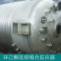 环己酮连续缩合反应器-环己酮聚合脱水反应器-设备技术厂家