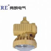 LED防爆码头海上钻井平台用应急灯BAJ52系列