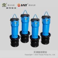 电动变频轴流潜水电泵_结构_要点概述