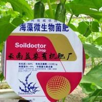 云南有机肥厂家 颗粒菌肥 粉末有机肥 矿源黄腐酸钾 草木灰