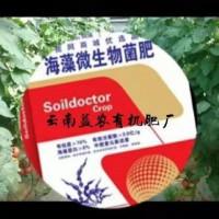 西昌有机肥厂 西昌微生物菌肥厂 西昌液态有机肥厂 颗粒菌肥