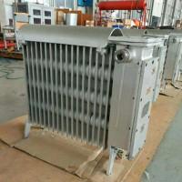 矿用RB-2000/127(A) 防爆电热取暖器干烧暖气片