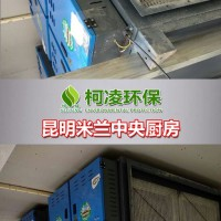 成都生产酒楼油烟净化器,食堂油烟净化器