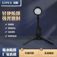 英鹏防爆移动灯  FW6117-LED防爆轻便移动灯