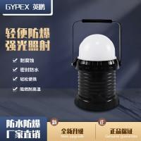 FW6330轻便式工作灯  化工厂防爆便捷工作灯