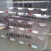卖鸽笼兔笼鸡笼鸟笼狗笼宠物笼运输笼鹌鹑笼鹧鸪笼芦丁鸡笼