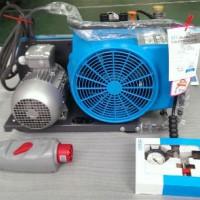 进口德国宝华J-Ⅱ呼吸气瓶填充泵空气压缩机