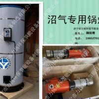 家用气煤两用锅炉结构特点及型号表