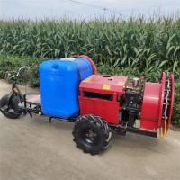 玉米小麦除虫打药机 蔬菜大棚烟雾机 蔬菜大棚烟雾机