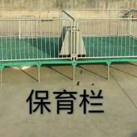 星恒机械小猪保育床保育栏仔猪用复合板可加配电热板保育床*