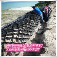 边坡防护塑料蜂窝格九江河道护坡种草绿化格室批发生产厂家