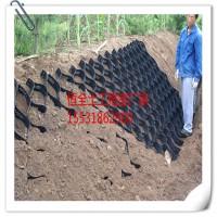 湖南河渠护岸hdpe网格|边坡种树绿化塑料格室实体生产厂家
