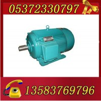 YBK3-180L-4-22电机