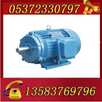 YBK3-180L-8-11电机