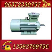 YBK3-200L1-2-30电机