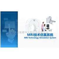 MRI技术仿真虚拟实验系统