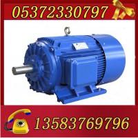 YBK3-225M-6-30电机