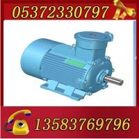 YBK3-225S-8-18.5电机