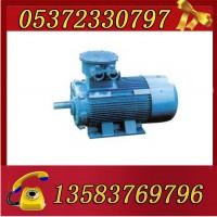 YBK3-250M-2-55电机