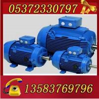 YBK3-280S-8-37电机
