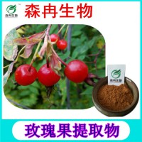 森冉生物 刺玫果提取物 玫瑰果提取物 植物提取原料粉